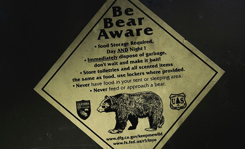 Bear Warning Sign