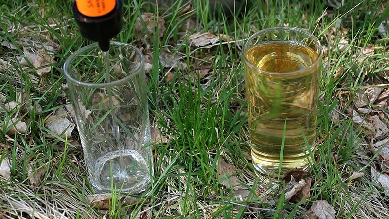 Filtering water with the Sawyer Mini water filter